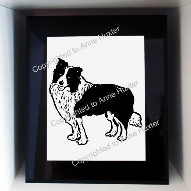 Border Collie Dog Template